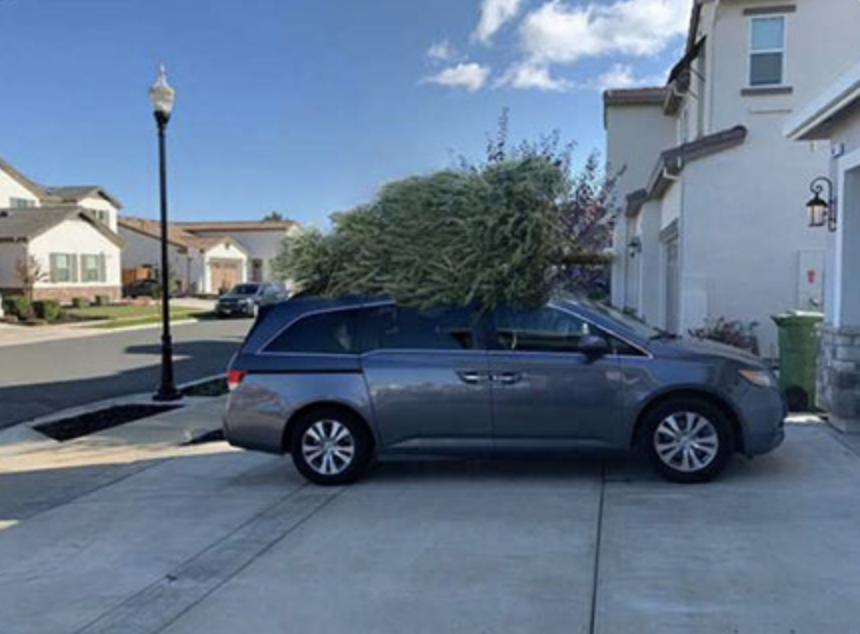 Father trolls his wife with photoshopped christmas tree photo's