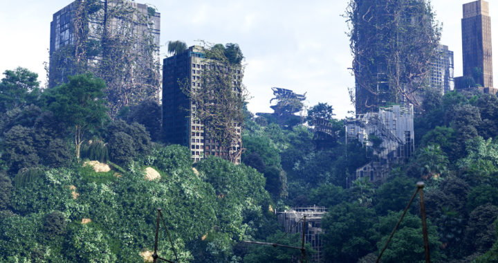 What are vertical forests and where can they be found?